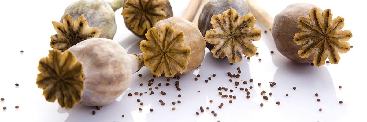 Missbruk av opium är tyvärr väldigt vanligt.